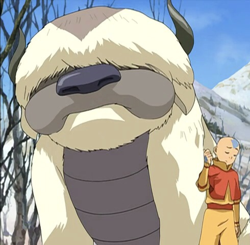 Aang with his pet Appa, as seen in the 2007 series.